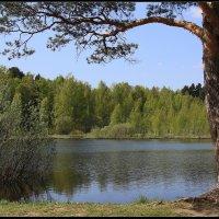 Чёрное озеро (3) :: DimCo ©