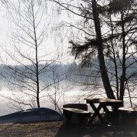 ещё никого...только я да туман :: liudmila drake