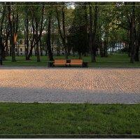 Солнечный коврик :: Евгений Никифоров