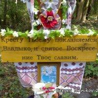 Андрушевка. Красная горка. Колодец в лесу. Сентябрь 2009 :: Сергей Ионников