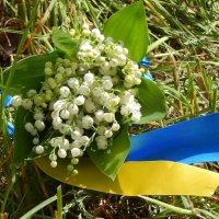 Ландыши #Украина :: Катюша Лебедева