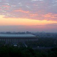 Утро :: Oksana Malakhova
