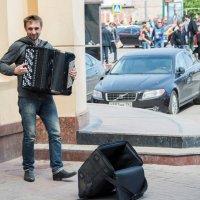 баянист :: Андрей Коротеев