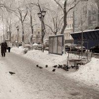 Фурштатская улица. Зимнее утро рабочего дня. :: Андрей Тульчинский
