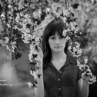 Хмурая весна :: Анастасия Володина