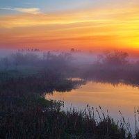 Фрагмент майского утра... :: Roman Lunin
