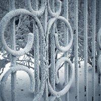 Сибирские морозы :: Николай Николаенко