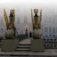 Мостик в тумане :: Valeriy Piterskiy