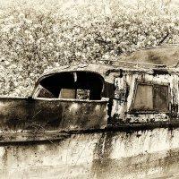 Ноев ковчег найден! Последняя пристань в яблоневом саду :: Светлана Васильева