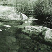 Монза - река моего детства :: Валерий Талашов