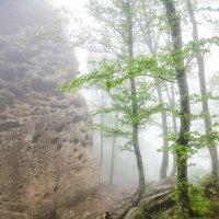 Гора ИНДЮШКА :: Алексей Сазонов