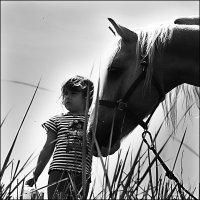 девочка и лошадь (цирк) :: виктор омельчук