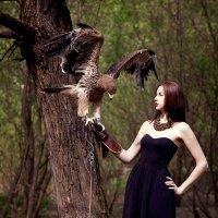Wild Hunting :: Tatima *