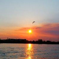 закат :: Нелля Симикова