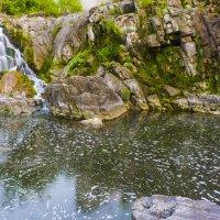 Стеблёвский водопад :: Светлана Борец