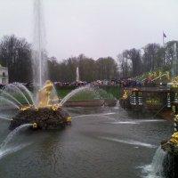 Петергоф, ежедневный запуск фонтанов :: Екатерина Чернышова