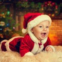 Маленький Санта :: Yulia
