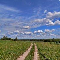 Русское поле :: Yuriy V