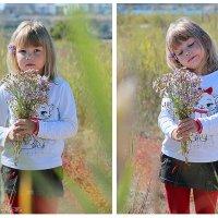 осенние цветы. :: Рима Башкирова