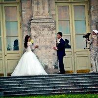 Свадьба :: Дарья Долгова