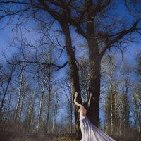 Dust in the wind :: Оксана Львова