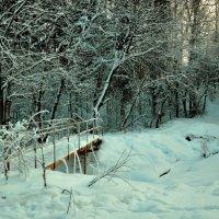 лес :: Елена Смирнова