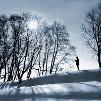 Мартовское солнце :: Валерий Талашов