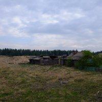 На окраине деревни. :: Rafael