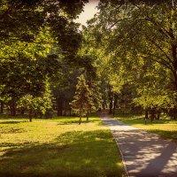 В старом парке. :: Евгений Никифоров