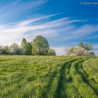 Природа :: Борис Устюжанин