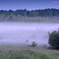 Туман :: Борис Устюжанин