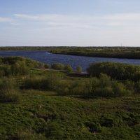 Дельта реки Сысола :: Виталий Житков