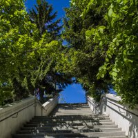 Путь наверх :: Ирина Старкова