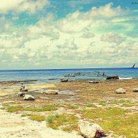 Beach, Cuba :: Arman S