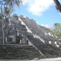 Калакмуль, Мексика :: svk