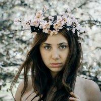 Весна :: Павел Никаноров