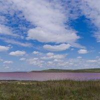 Розовое озеро :: Александр Крупский
