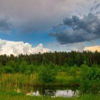 сине-зеленое :: Артем Фисенко