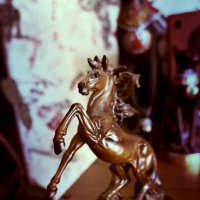 Лошадь :: Кристина Щукина