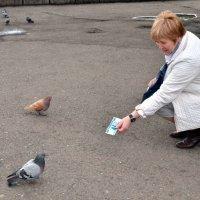 птицы денег не клюют - проверенно на практике :: Евгений Фролов