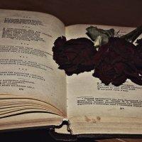 Книга, быть может, наиболее сложное и великое чудо из всех чудес, сотворенных человечеством на пути :: Lena Girey