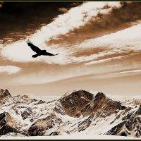 El Condor Pasa :: Alexandr Zykov