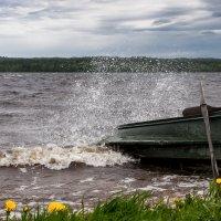 Озеро Пряжинское :: Ара Маргарян