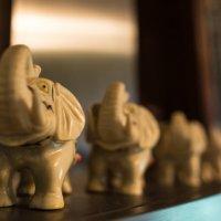 волшебные слоники :: Анастасия Садовская