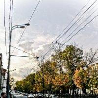 краски осени :: Олеся Семенова