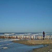 Одиночество :: Marina de Weerdt