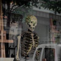 Скелет в витрине :: Anna Lubina