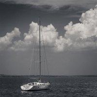 На встречу облакам.. :: Yuriy Puzhalin