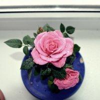 Роза :: Юлия Ерикалова