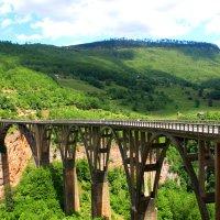 Дороги Адриатики. Самый высокий мост в Европе через реку Тара... :: Леонид Нестерюк